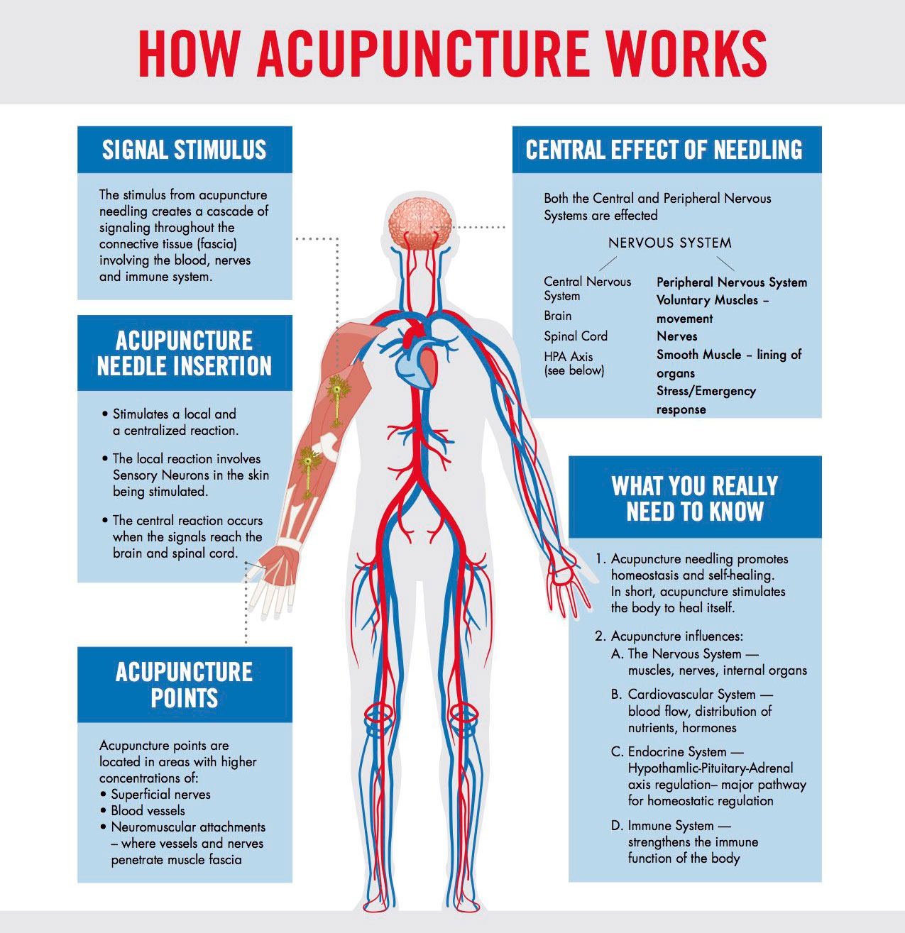 inflammation and acupuncture